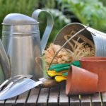 Clean Your Gardening Tools