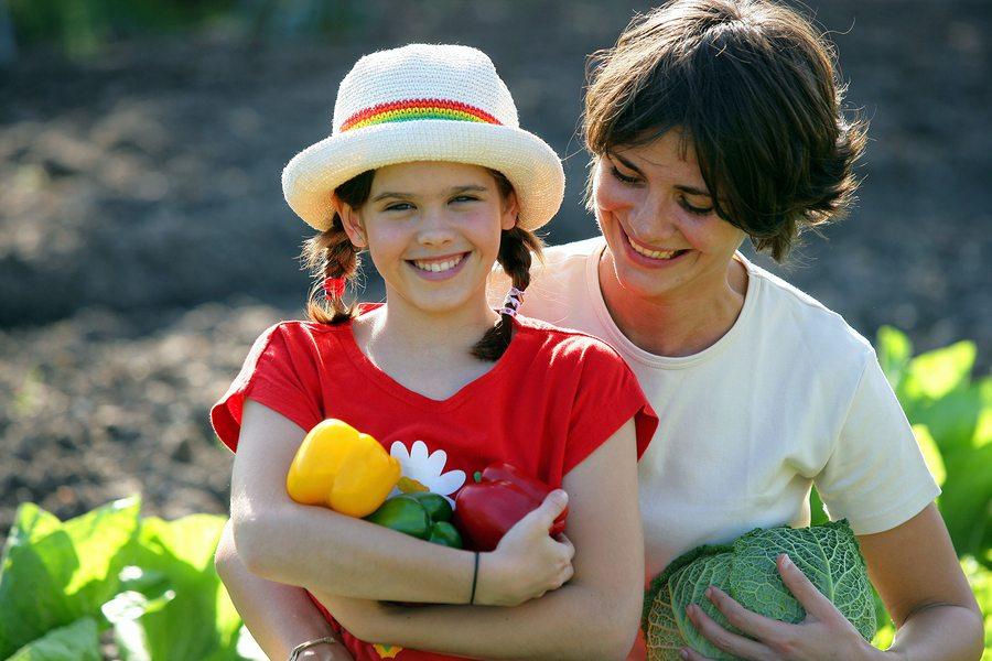 Greening-Up Your Sun City Center Home Garden